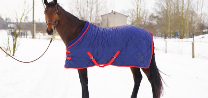 winterdeken paard